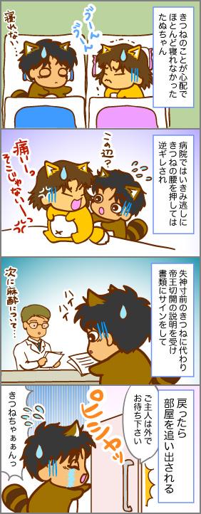 受難なたぬちゃん~出産(2)~