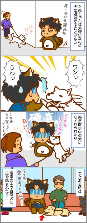 たぬちゃんは犬嫌い~その2~