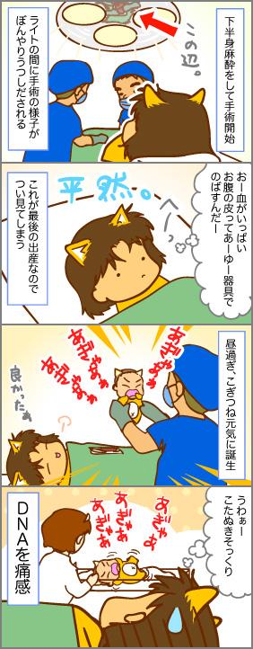 こぎつね誕生~出産(8)~