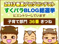 すくパラ2013春夏ブログ総選挙